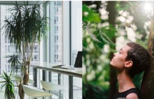 L'olfactif en entreprise : un enjeu Bien-Etre & Com'